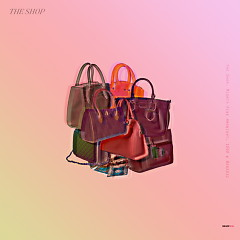 The Shop (Single)