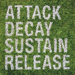 Attack Decay Sustain Release (Limited Edition)