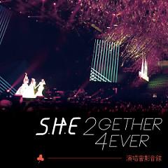 S.H.E 2GETHER 4EVER WORLD TOUR 2013 CD2