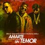 Amarte Sin Temor (Remix)