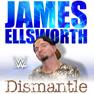 Dismantle (James Ellsworth)