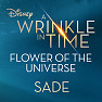 Flower Of The Universe (A Wrinkle In Time OST) (No I.D. Remix)