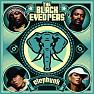 Lời dịch bài hát The Apl Song - The Back Eyed Peas (Apl.De.Ap)