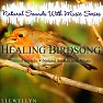 Healing Birdsong Natural Sounds