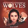 Wolves (Rusko Remix)