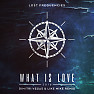 What Is Love 2016 (Dimitri Vegas & Like Mike Extended Remix)