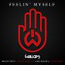 Feelin' Myself (Explicit)