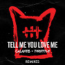 Tell Me You Love Me (Raven & Kreyn Remix)