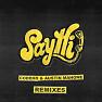 Say Hi (Felix Palmqvist Remix)